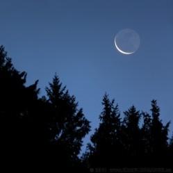 065852temny-mesicsumava