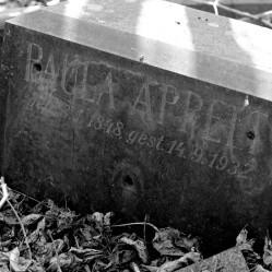 Opuštěný hřbitov v Horních Počernicích